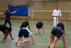 Judo in sports hall