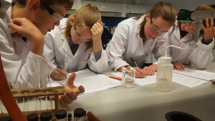Year 8 scientists win at Chemistry Festival