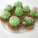 cactus cakes by year 8 student